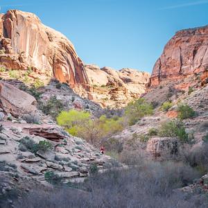 Negro Bill Canyon-3971