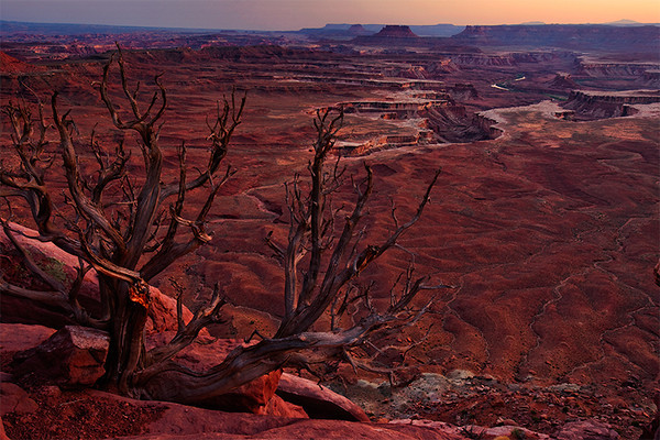 Green River Overlook, Canyonlands National Park, Island in the Sky, Utah.