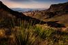 Juniper Canyon, Big Bend National Park, Texas