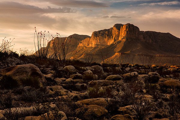 Guadalupe Mountain National Park, Texas