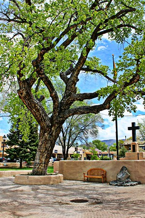 The Tree and Cross