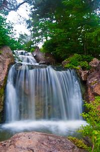 Falls at the Botanic Garden