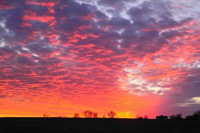 January Sky (Explored)