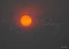 Foggy Sunrise 0269 w63
