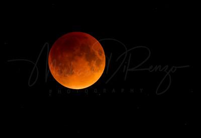 Eclipse Moon 4737 w55