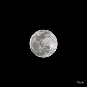 """""""Wolf Moon"""""""