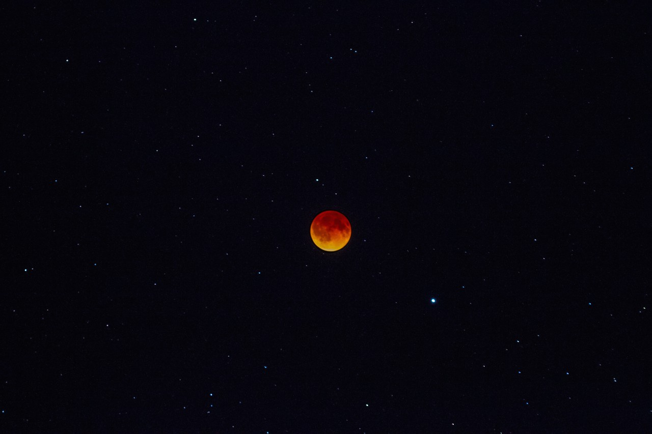 The blood moon & the stars