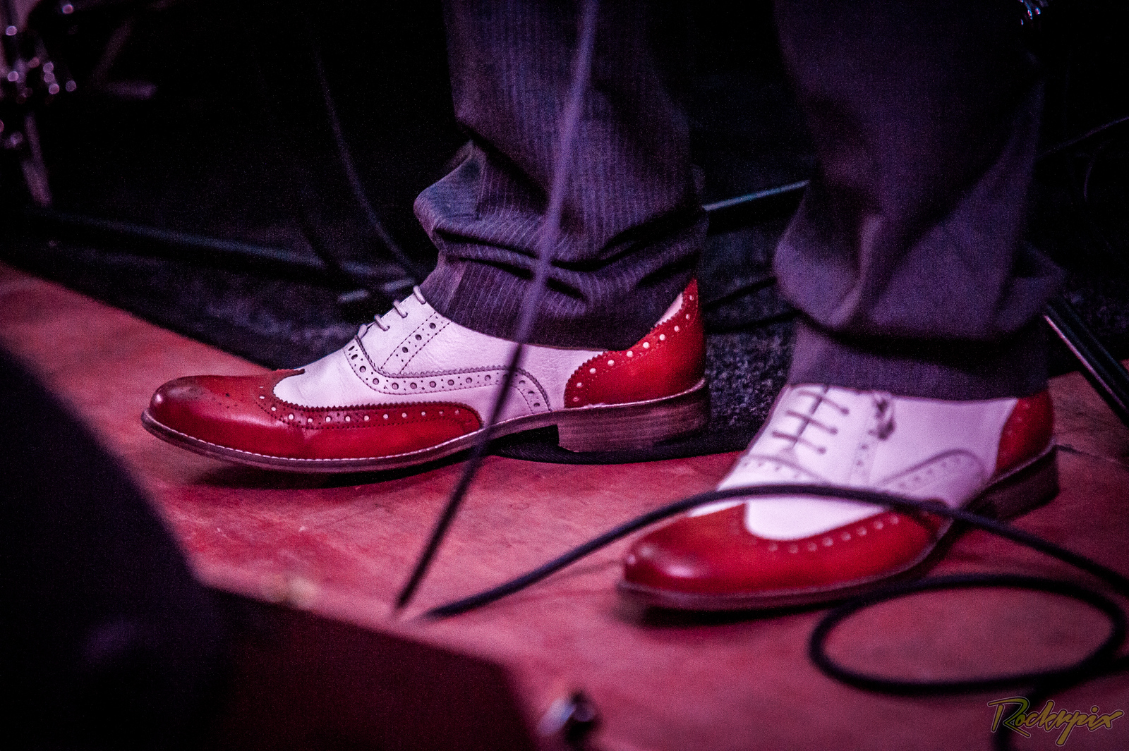 ©Rockrpix - Poplar Jake & The Electric Delta Review