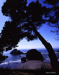 California, Trinidad Head