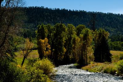 Dolores Creek, CO