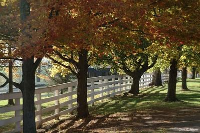 Lexington,Kentucky