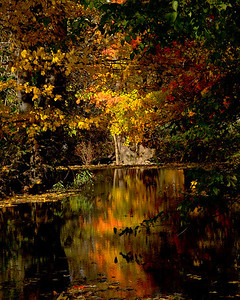 """Boyle County Kentucky - Locals call this area """"The Nobs"""" because of its hilly terrain.  The streams run between the hills."""