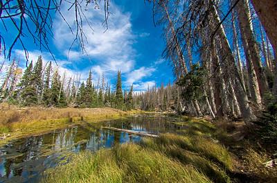 Cedar Breaks National Monument, UT - Alpine Pond