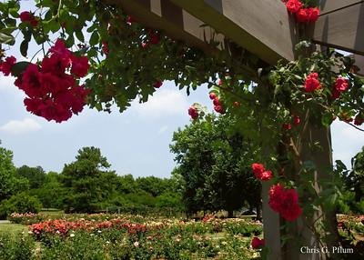 Norfolk VA, Botanical Gardens