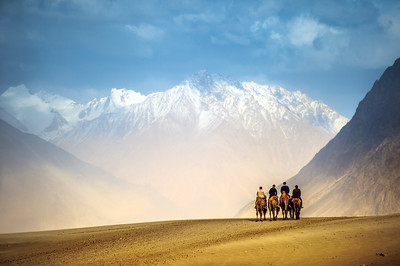 Camel riding at desert of Nubra Valley in Ladakh india.