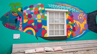 Street Art, Kralendijk, Bonaire, June 2019.