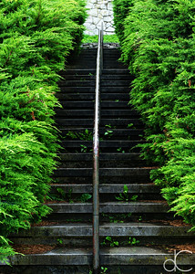 Stairway, Niagara Falls, Ontario, Canada, August 2018.