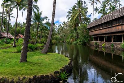 The Lagoon, Coco Palms Resort, Kapa'a, Hawai'i, June 2014.