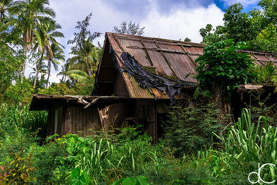 Abandoned Building, Coco Palms Resort, Kapa'a, Hawai'i, June 2014.
