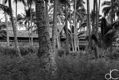 Dining Building, Coco Palms Resort, Kapa'a, Hawai'i, June 2014.