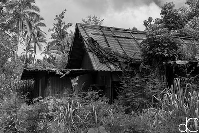 Abandoned Building, Coco Palms Resort, Kapa'a, Hawai'i, June 2014.