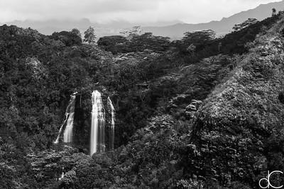 Opaeka'a Falls, Wailua River State Park, Kaua'i, June 2014.