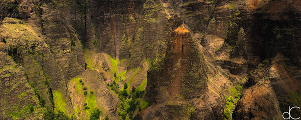 Waimea Canyon State Park, Kaua'i, June 2014.