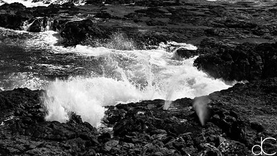 South Shore Waves, Kaua'i, June 2014.