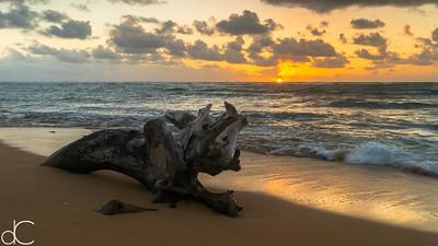 Fathers Day Sunrise, Kapa'a, Kaua'i, 2014.