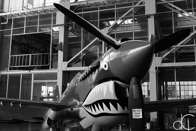 Curtiss P-40E Warhawk, Pearl Harbor, Hawai'i, June 2014.