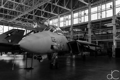 Grumman F-14D Tomcat, Pearl Harbor, Hawai'i, June 2014.