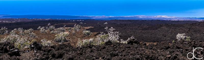 1887 Moana Loa Lava Flow, Hawai'i, June 2014.