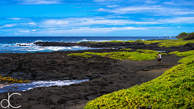Black, Blue, and Green, Punalu'u Black Sand Beach, Hawai'i, June 2014.