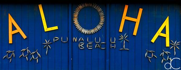 ALOHA, Punalu'u Black Sand Beach, Hawai'i, June 2014.
