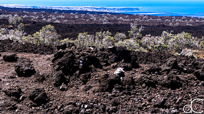 1887 Lava Flow with the Pakini Nui Wind Farm, Hawai'i, June 2014.