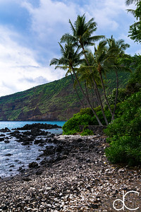 Kealakekua Bay, Captain Cook, Hawai'i, June 2014.