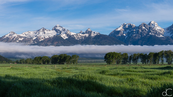 Clearing Fog, Grand Teton National Park, June 2015.