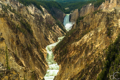 Lower Falls of the Yellowstone River, Yellowstone National Park, June 2015.