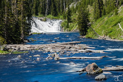 Lewis Falls, Yellowstone National Park, June 2015.