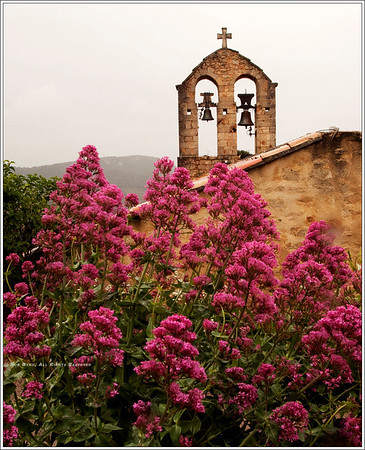 "Street scenes in Suzette.  ""Bells and (not exactly) Thistles"""