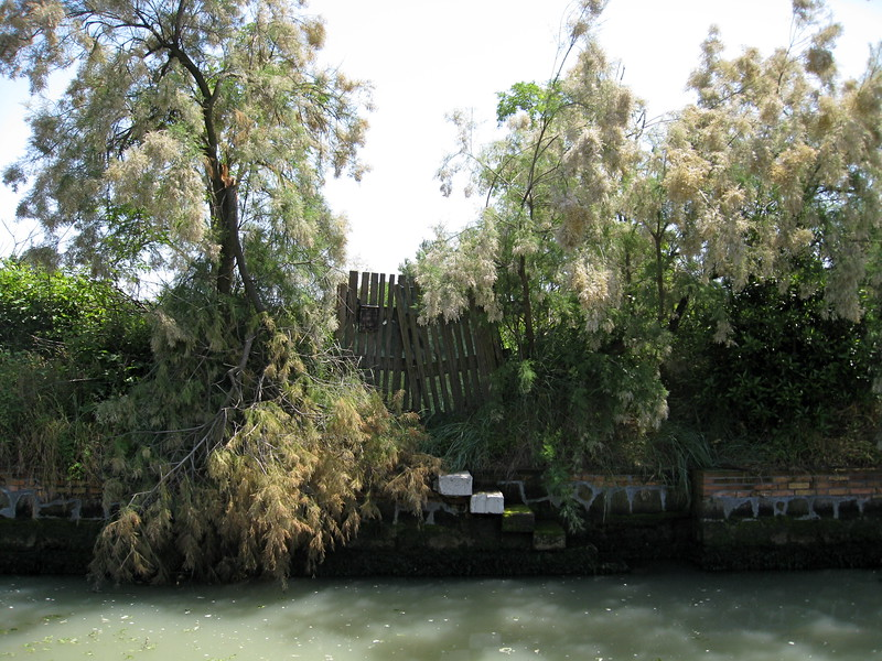 Torcello canal.