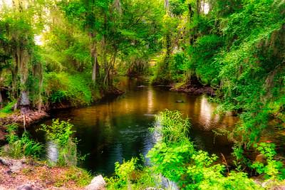 Fenney Springs