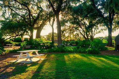 Live Oaks Park