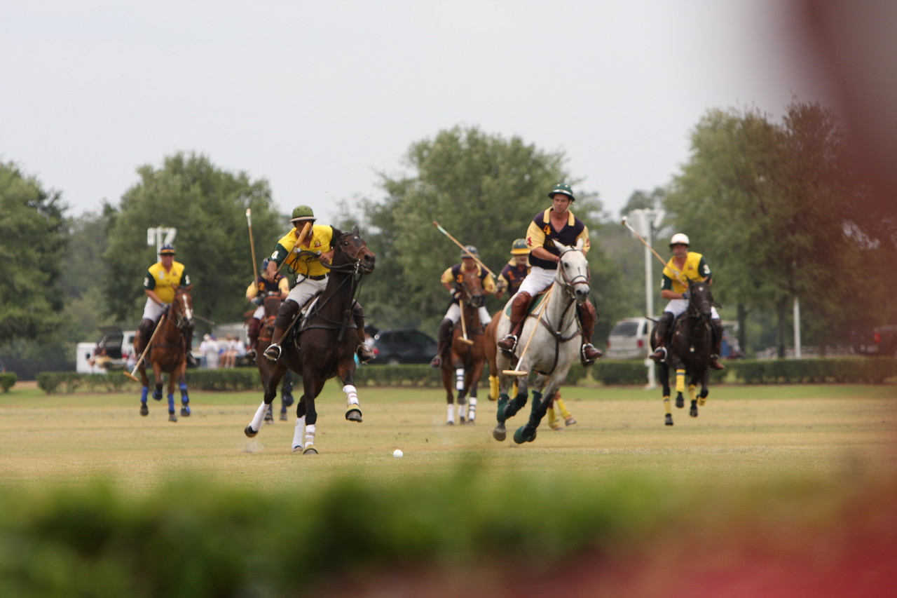Polo match in The Villages.