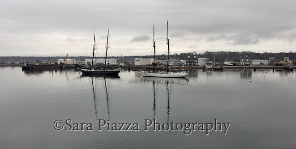 Vineyard Haven Harbor, Schooner Alabama, Schooner Shenandoah