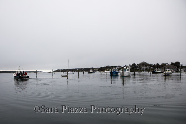 Edgartown News, Edgartown Harbor, Chappy Ferry, local color