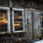 Herring Creek Farm, Menemsha, Snow, 01-06-17