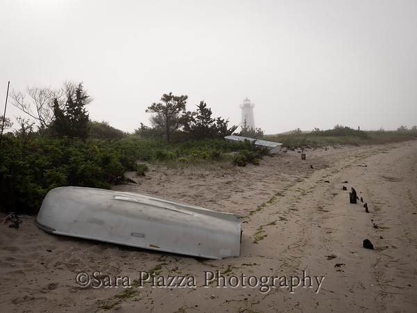 edgartown news, edgartown lighthouse, foggy morning, edgartown fog, rosa rugosa