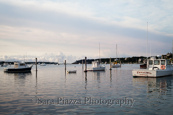 Edgartown, downtown, Edgartown Harbor, Marty Nadler, Edwina B.
