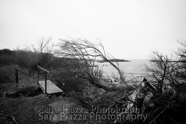 Hough's Pond, Edgartown Harbor, storm tide, Edgartown News, Sara Piazza Photography